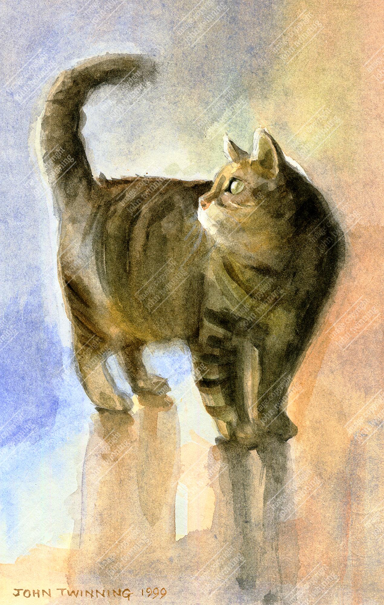 Tabatha, watercolour sketch